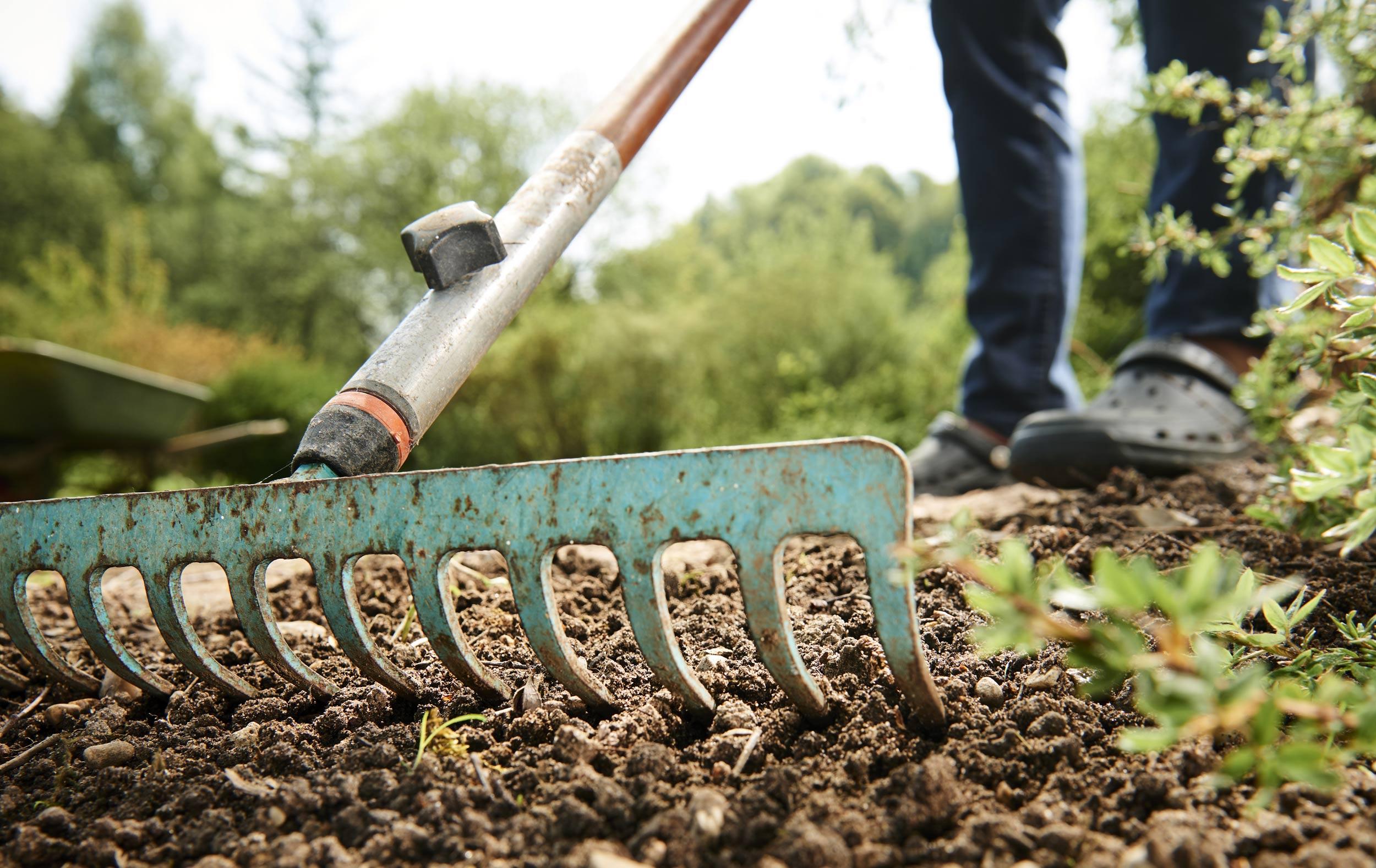 RHS Level 3 Certificate in Practical Horticulture