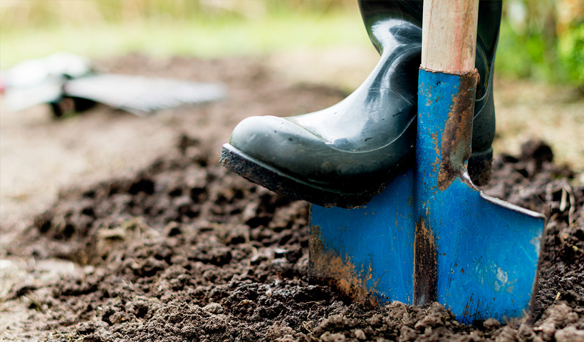 *New Content* Types and properties of soil